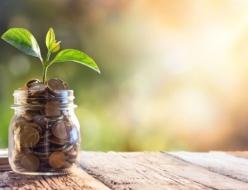 保有株数の調整で、リスク低減&利益の最大化を狙おう